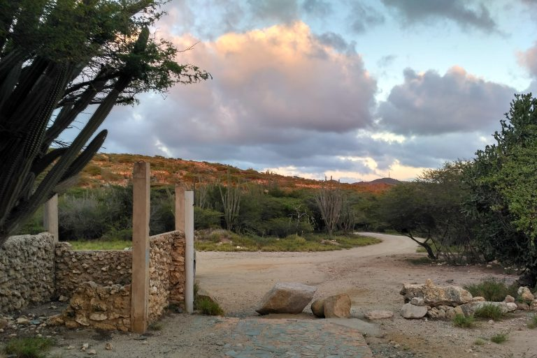 The entrance to the Balashi Gold Mill ruins in the golden light of the setting sun