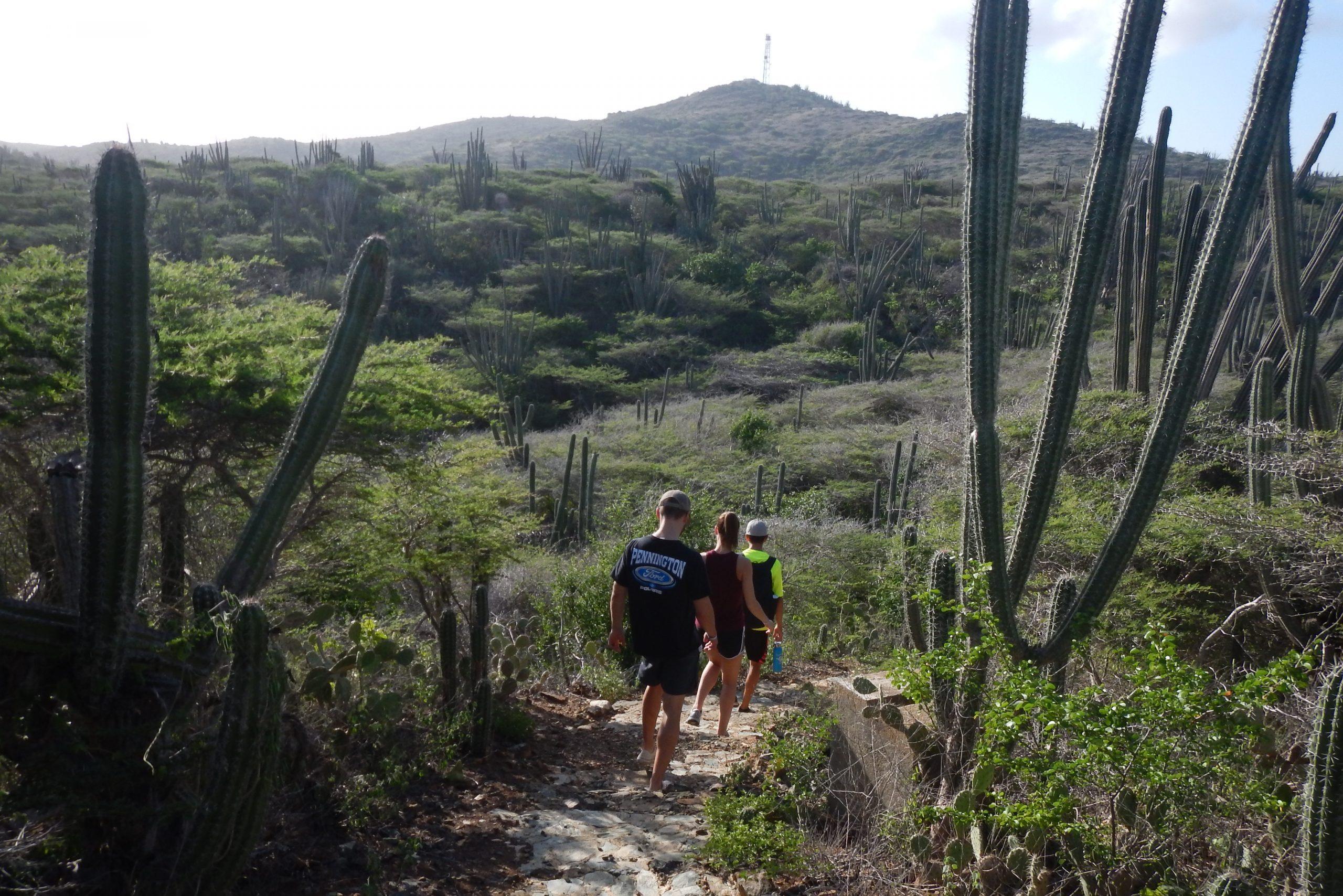 Hiking in Arikok National Park